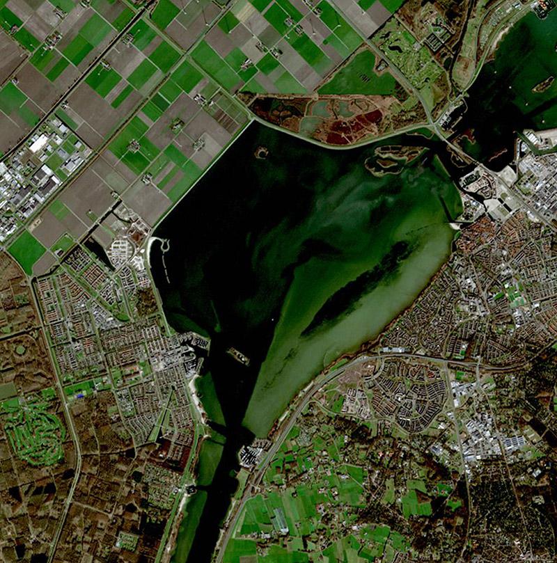 NEO riparian vegetation monitoring- S2190215