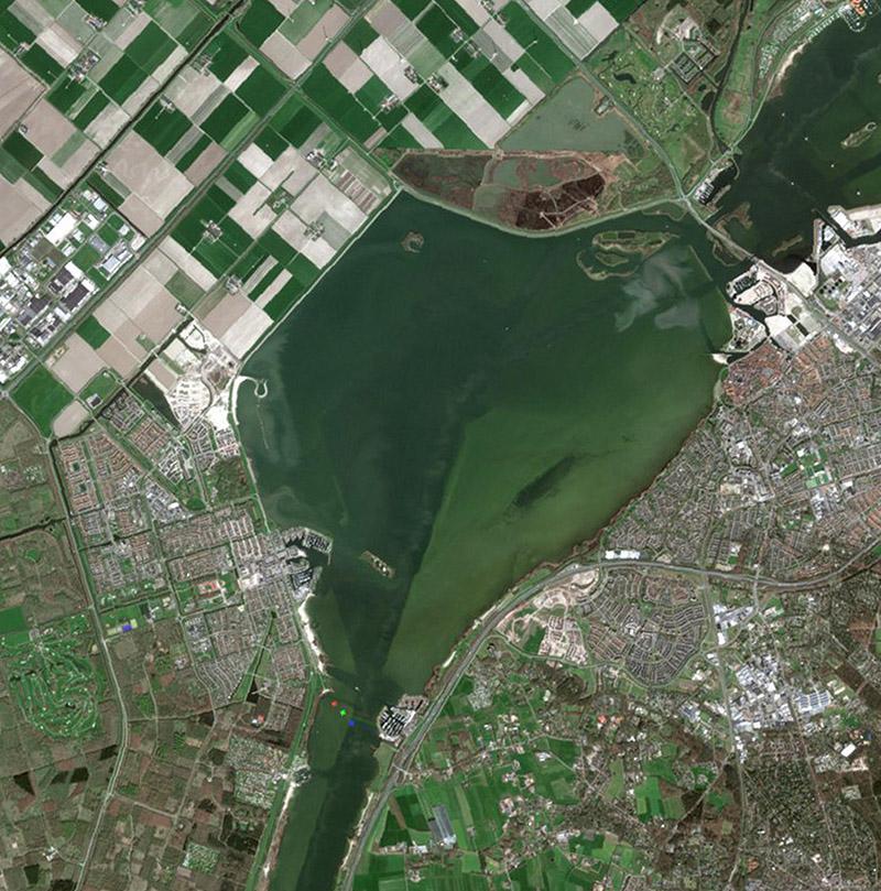 NEO riparian vegetation monitoring- S2190401